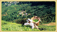 East India Tours, East India Tour Packages